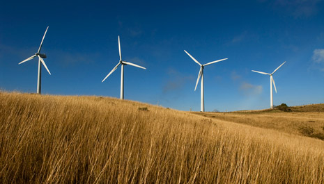 Wind energy in South Africa: Enel Green Power starts a 111 MW wind farm