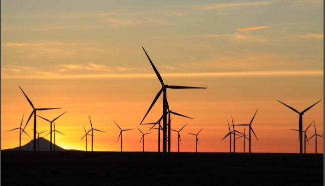 Ukraine's wind energy in next 5 years to expand with new facilities of 1 GW