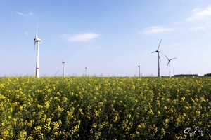 China General Nuclear acquires China General Nuclear acquires Belgium's largest onshore wind farm