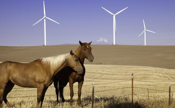USA-WIND ENERGY - Iberdrola Hay