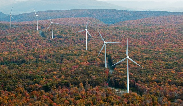 Wind Power: A great American resource