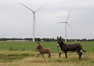 Wind Power Is Poised to Spread to All States