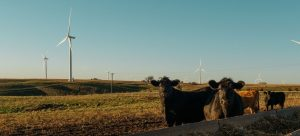 iowa-continues-to-be-a-wind-energy-leader