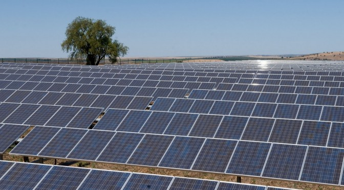 Cleanergy installs solar power plant in China