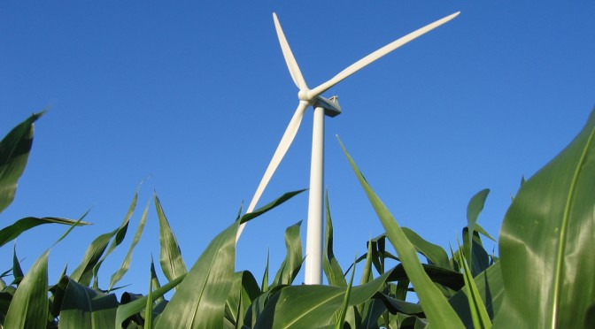 US wind energy industry vaults over 50 GW milestone