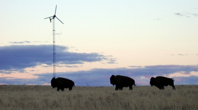 Bringing Down the Cost of Small Wind Turbines