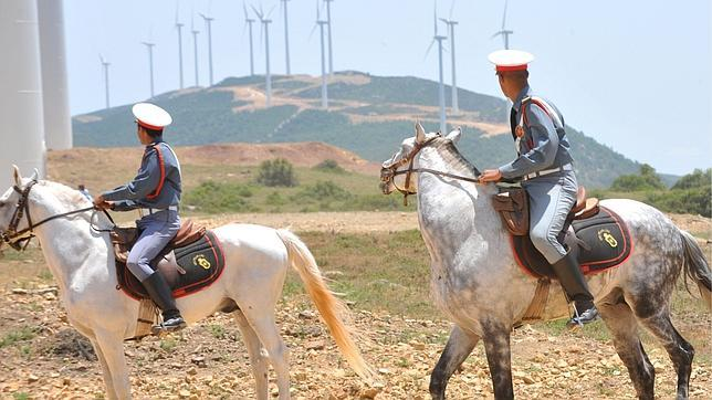 French, Moroccan companies to build Africa's largest wind farm