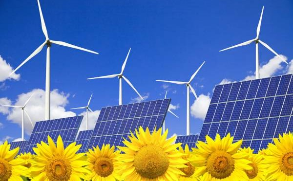 OECD electricity generation from wind energy and solar power grew 16% in 2015