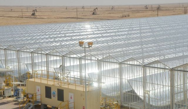 Using Concentrated Solar Power to pump oil