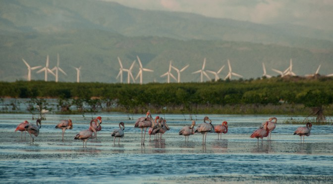 Dominican Republic's Sustainable Energy Resources