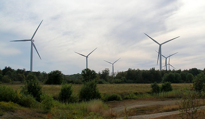 American Wind Wildlife Institute database project moves ahead