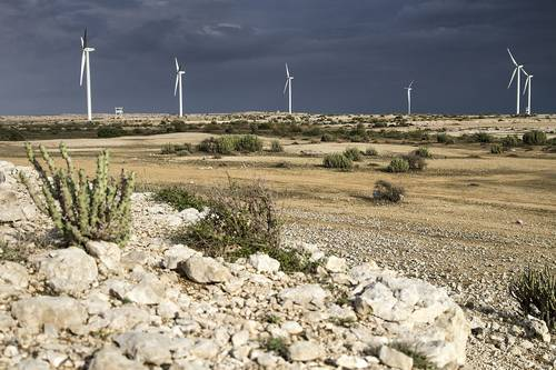 Wind power in Pakistan: France to invest $20m in Sindh in a 50 MW wind farm
