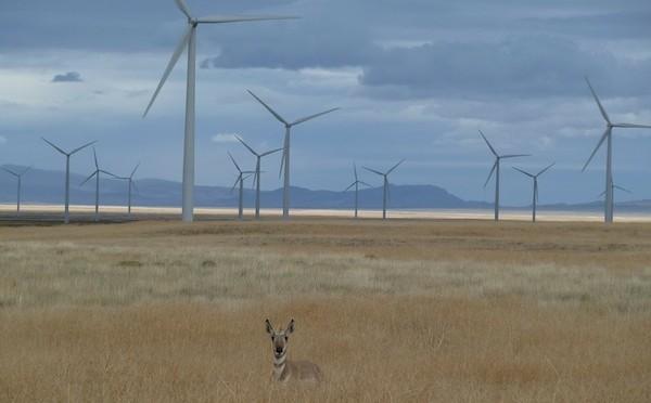 Sempra to develop 2nd phase of central Nebraska wind farm