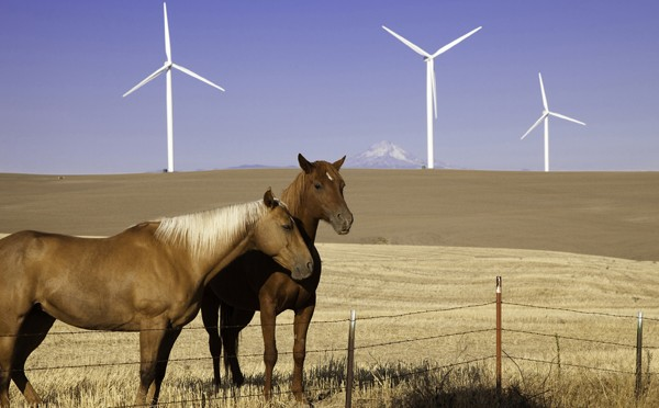 Iberdrola Renewables Files Application to Build Wind Farm in Danbury and Alexandria