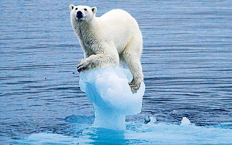 Arctic Sea Ice Freefall is Mirror Image of Carbon Dioxide Ascent