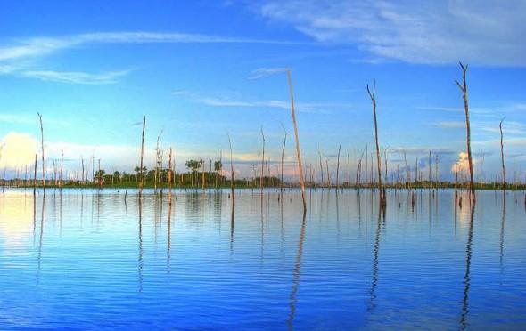 Brazil's 350MW floating solar power plant