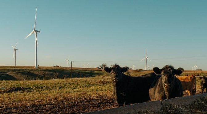 "Wind industry hires senior Iowa state legislator to advance policy in the ""American Wind Belt"""