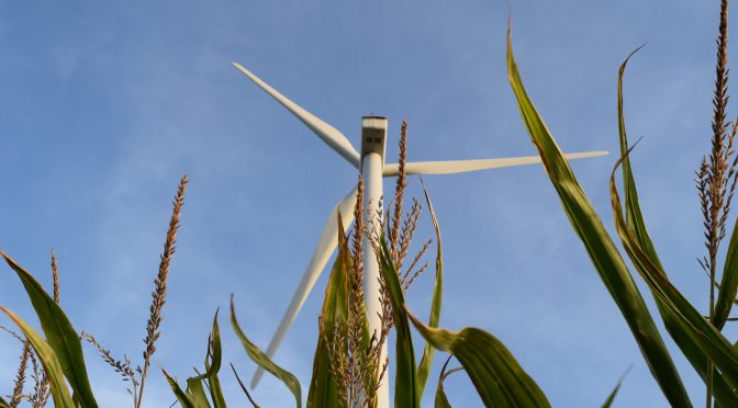 Hundreds of wind power businesses: US Senate gets it right on tax reform