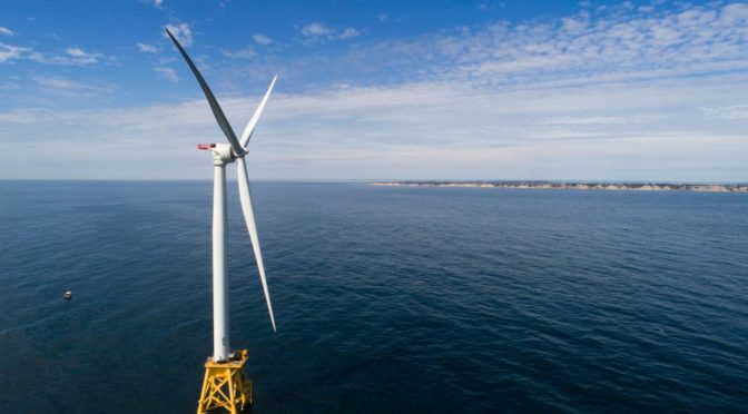 Fish feeding frenzy at Block Island wind farm