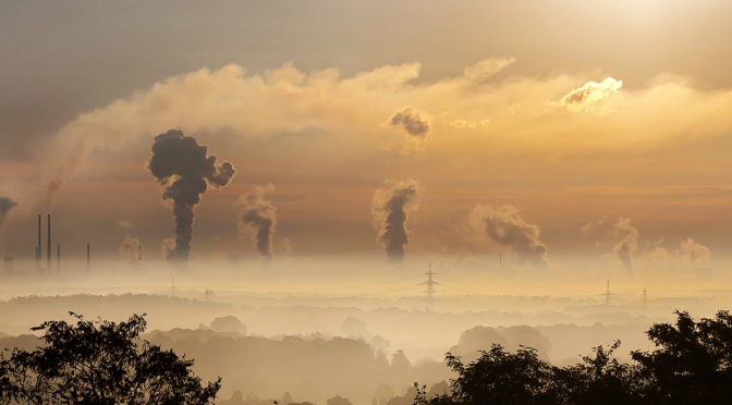 Deal struck in carbon market reforms
