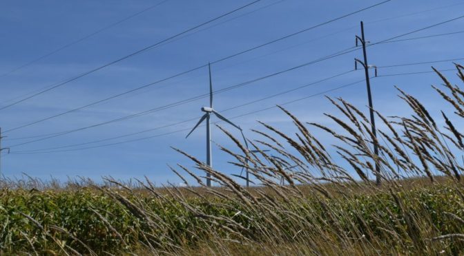 Minnesota wind power offers low-cost, reliable, clean electricity