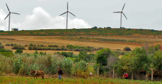Tunisia produces 3 pct of electricity from renewable energy