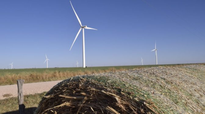 A guide to buying wind power for Fortune 500 companies