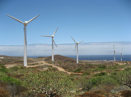 The Canary Islands hosted half of the new wind energy installed in 2018 in Spain