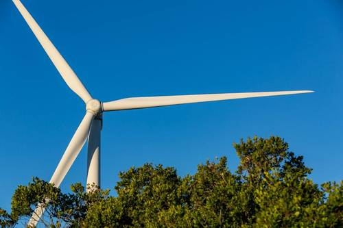 NBT starts building second phase of Zofia wind farm in Zaporizhia region