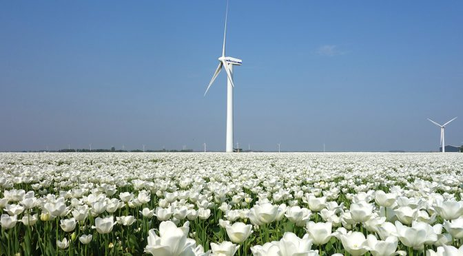 Dutch Climate Agreement sets ambitious targets for wind energy and CO2 reductions