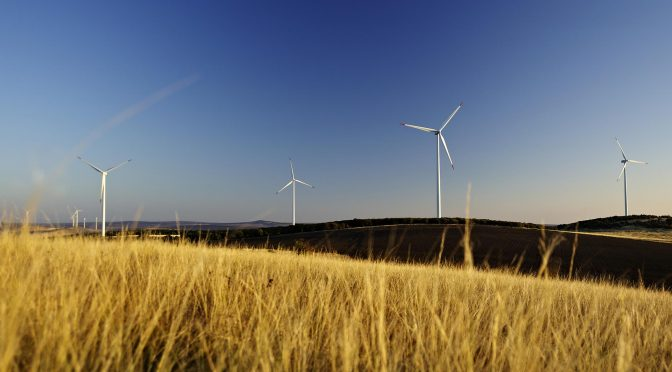 Global Wind Day: the wind energy of the future will lead the Green Recovery