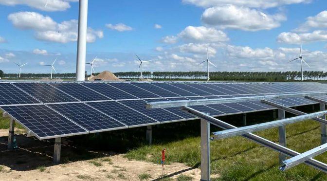 Solar farms can increase biodiversity