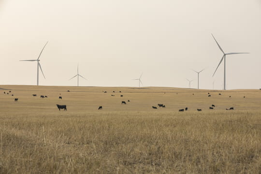 Ørsted completes Willow Creek Wind Farm and takes final investment decision on Western Trail Wind Energy
