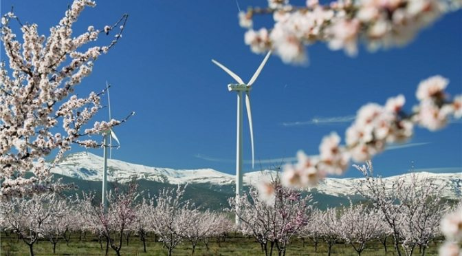 Iberdrola starts a 79 MW wind energy complex between Malaga and Seville, in Andalusia